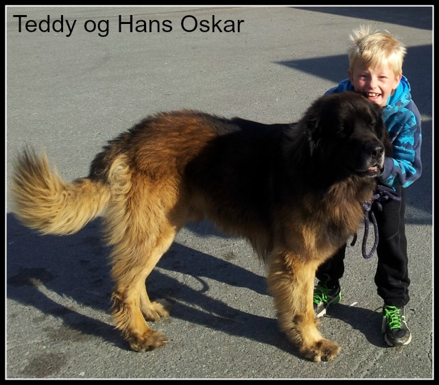 Teddy og Hans Oskar Susannashelse.no