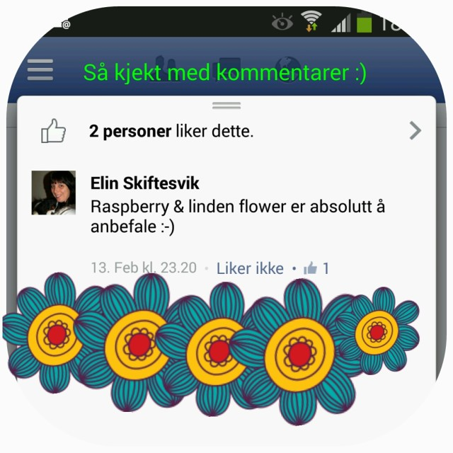 Susannashelse kommentar Facebook